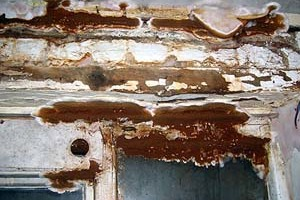 Woodworm Surveys in London and Bristol